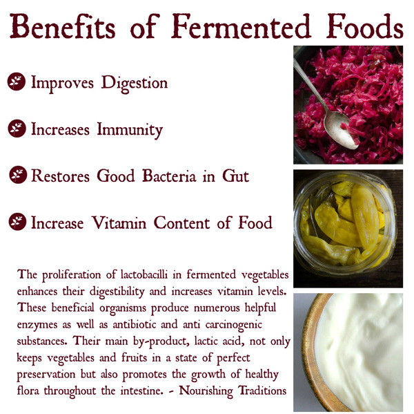 How To Can Fermented Foods