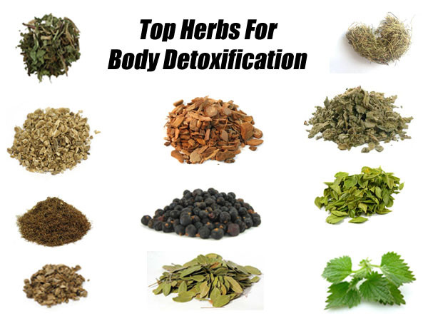 Blood detoxification how to cleanse your blood naturally