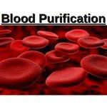 purify blood naturally