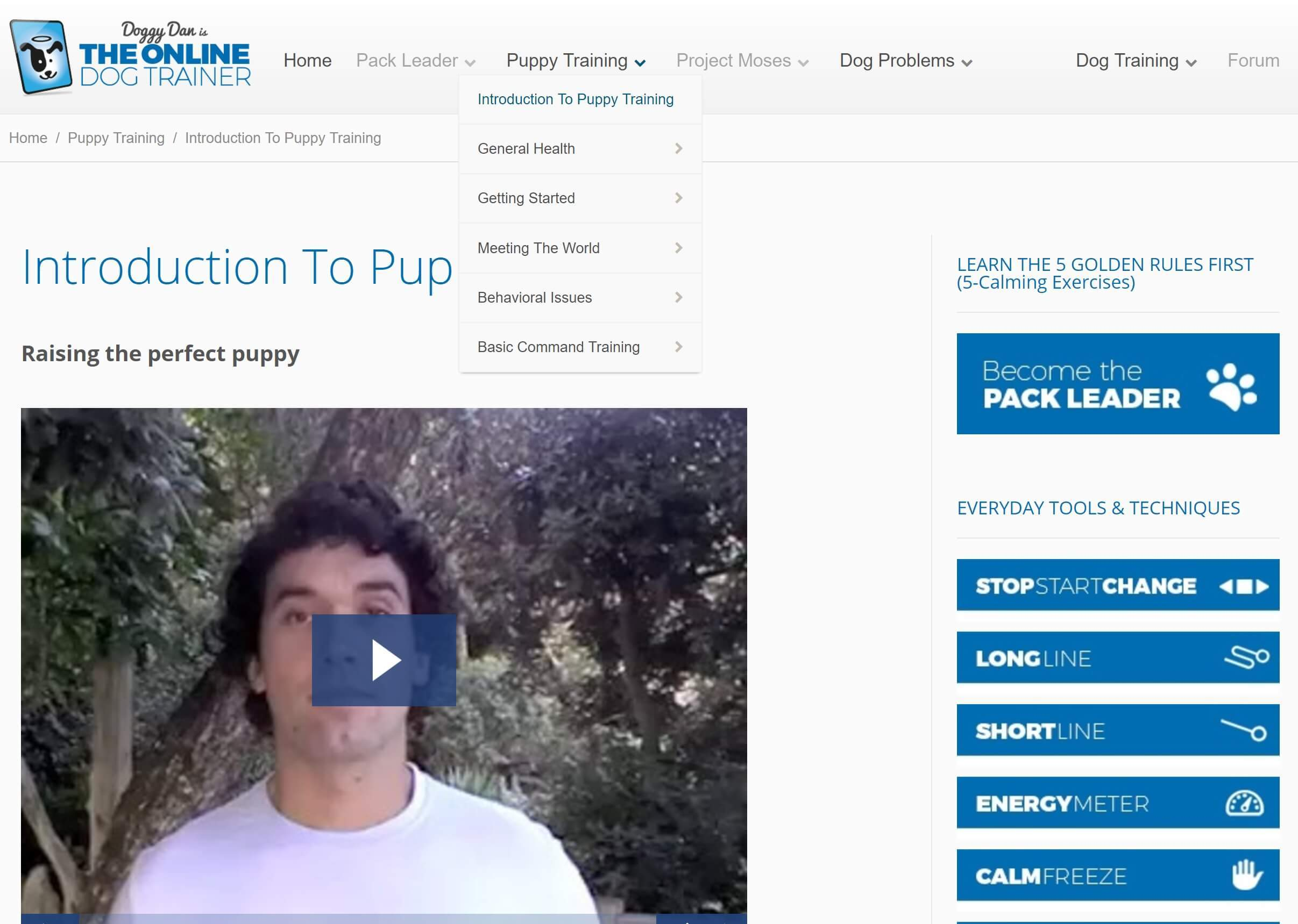 The Online Dog Trainer: Introduction To Puppy Training