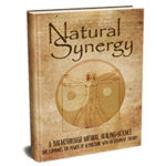 Natural Synergy PDF